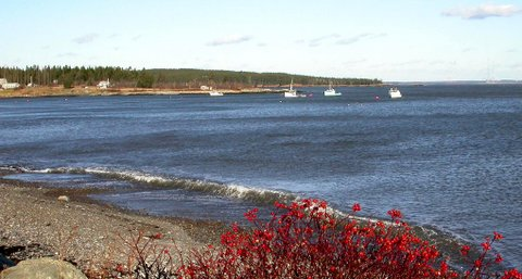Starboard in the fall
