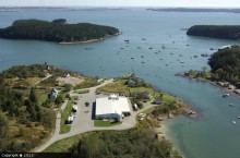 Bucks Harbor from the air
