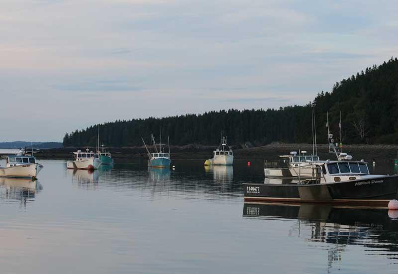 Points Of Interest Town Of Machiasport Maine